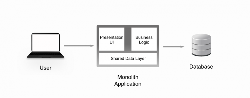 Monolith Diagram. Note the Presentation UI and Business Logic in the same package
